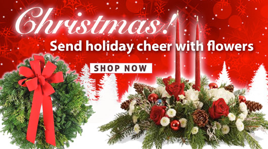 Christmas and Holiday Flowers