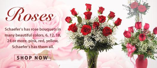 Roses from Schaefer's