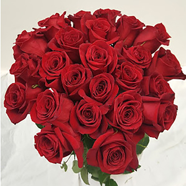 Red Roses Grower Bunches