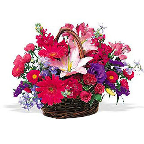 WW-202 Hot Pink Basket