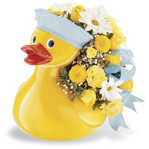 WW-206 Just Ducky Boy