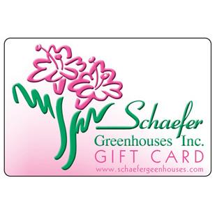 WW_GC Gift Card