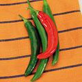 Garden Salsa Hot Pepper