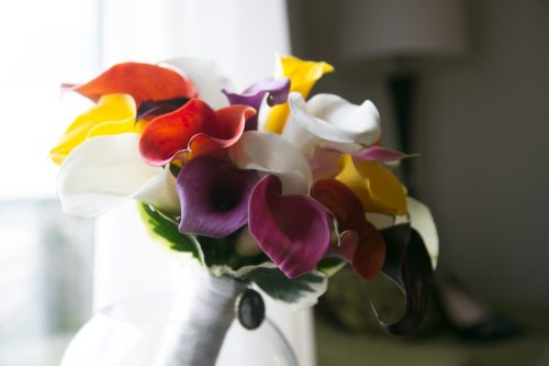 Bridal bouquet of colorful call lilies