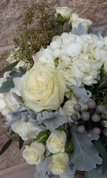 bouquet of white garden roses, spray roses and hydrangea with accents of silvery gray dusty miller.