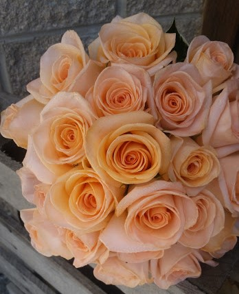 Lovely peach rose bridal bouquet.