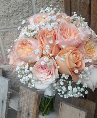 Peach and pink garden roses with delicate babysbreath accents.