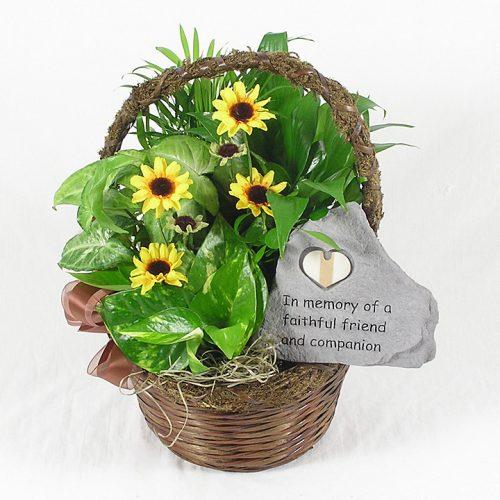 Pet funeral flowers sympathy arrangements schaefer