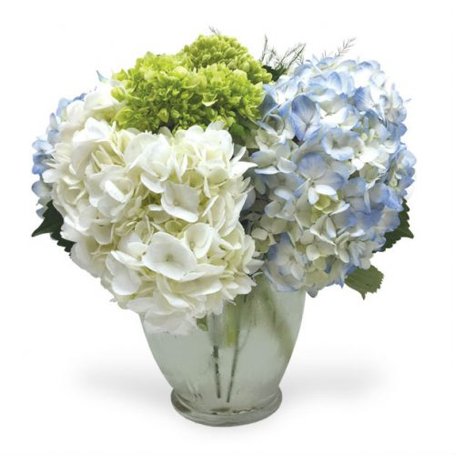 Aurora il mother s day flowers florist delivery oswego