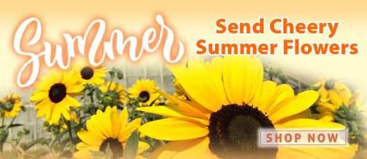 Summer Flowers at Schaefers!